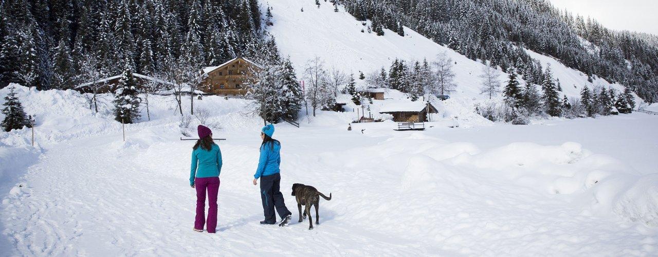 Winterwandern_Zillertal_im_Badhotel_Kirchler_Tux_02.jpg